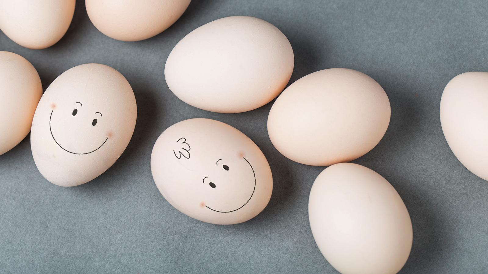 13 de octubre: Día Mundial del Huevo