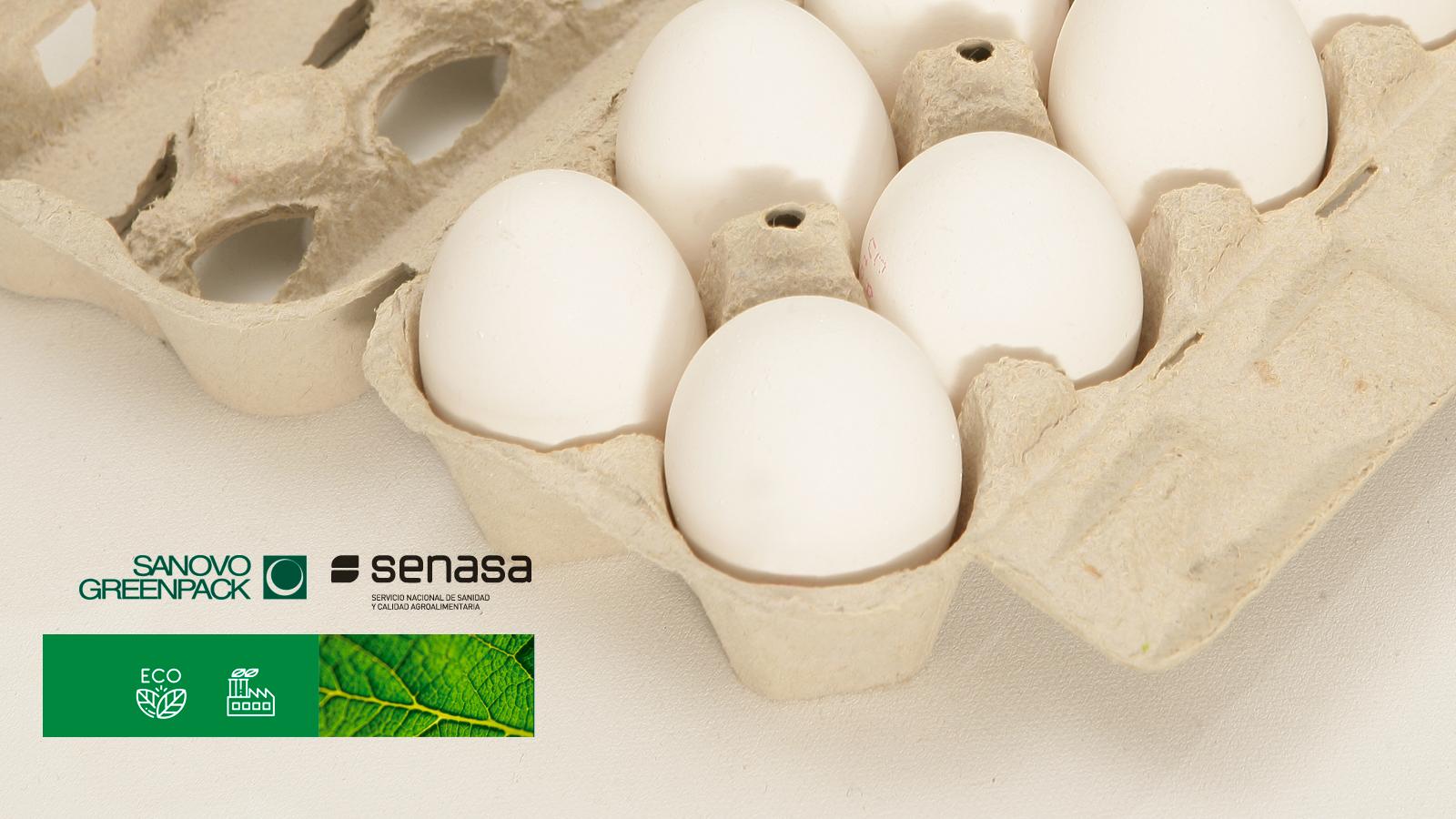 CERTIFICACIÓN DE SENASA E-534 Y E-536
